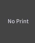 noprint
