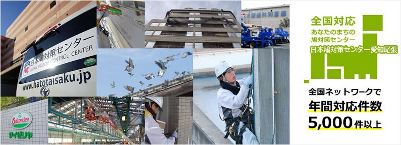 全国対応 あなたのまちの鳩対策センター 日本鳩対策センター愛知尾張