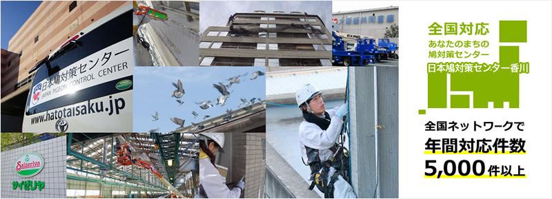 全国対応 あなたのまちの鳩対策センター 日本鳩対策センター香川
