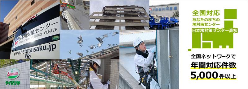 全国対応 あなたのまちの鳩対策センター 日本鳩対策センター高知