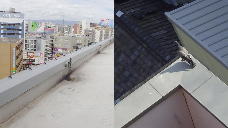 屋上・パラペット