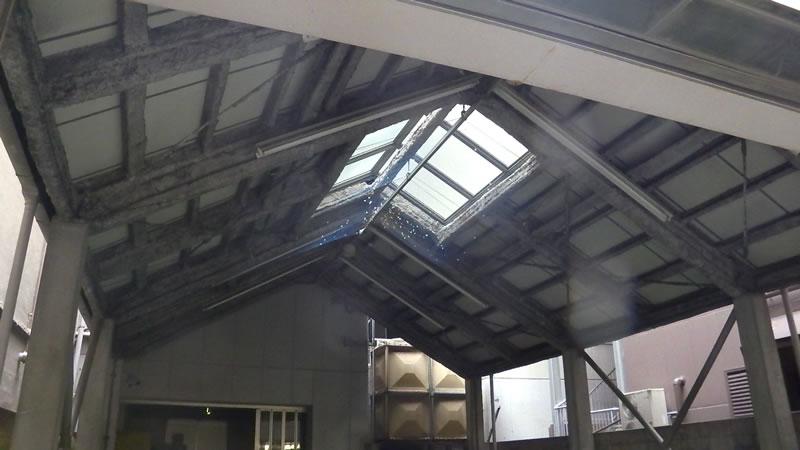 屋根開口部