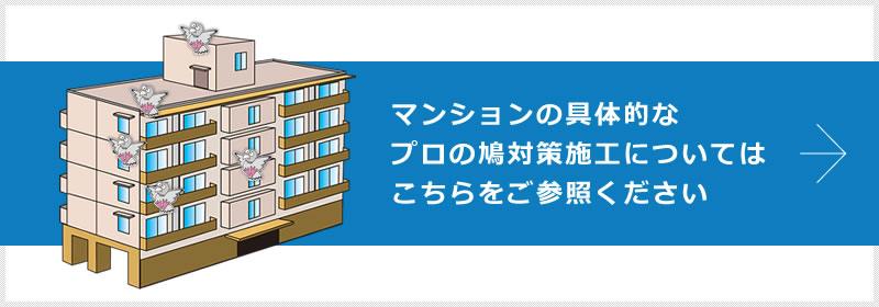 マンションの具体的なプロの鳩対策施工についてはこちらをご参照ください