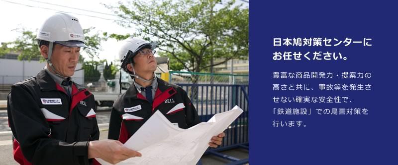 日本鳩対策センターにお任せください。