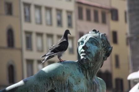 statue-bronze-pigeon