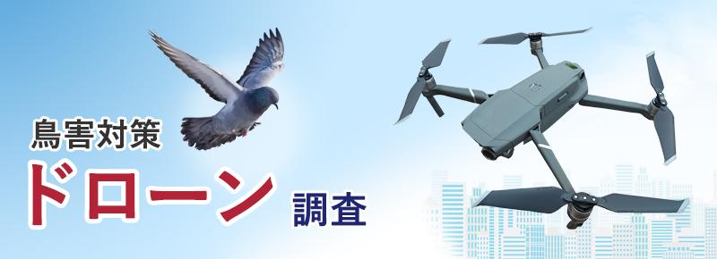 鳥害対策 ドローン調査